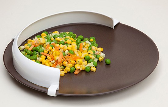 plate guard